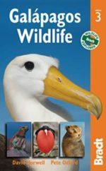 Bradt galapagos wildlife