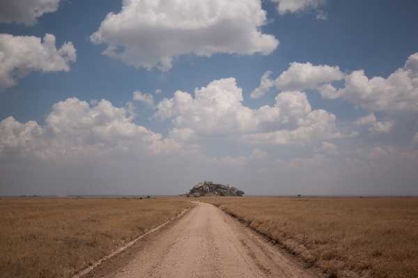 Serengeti Tanzania pianura infinita
