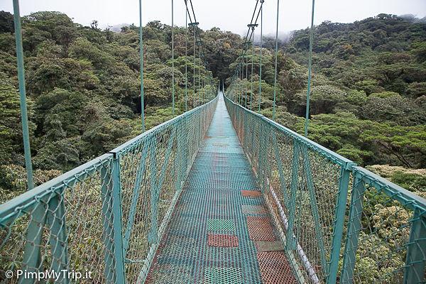 Ponti-sospesi-monteverde-cloud-forest