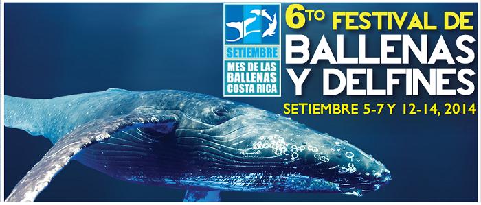 festival-marino-ballena