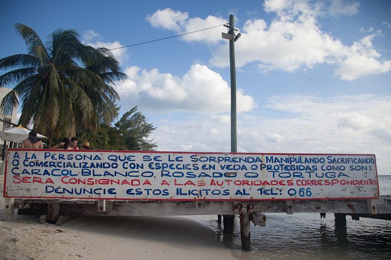 cartello-isla-mujeres-cancun