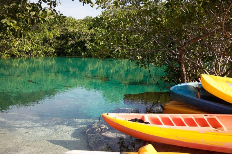 diving-casa-cenote