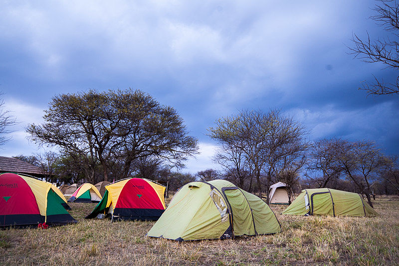 serengeti-camping