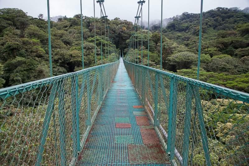 percorso-ponti-sospesi-monteverde