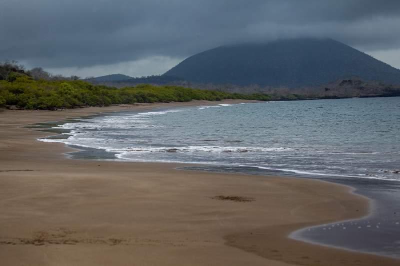 isole galapagos Playa espumilla