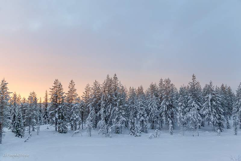 lapponia-svedese-tramonto