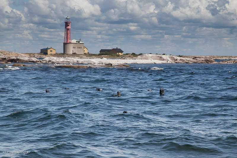 utklippan-arcipelago-svedese