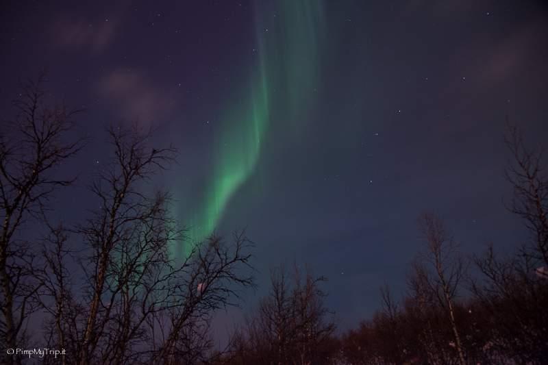 aurora-boreale-svezia-abisko
