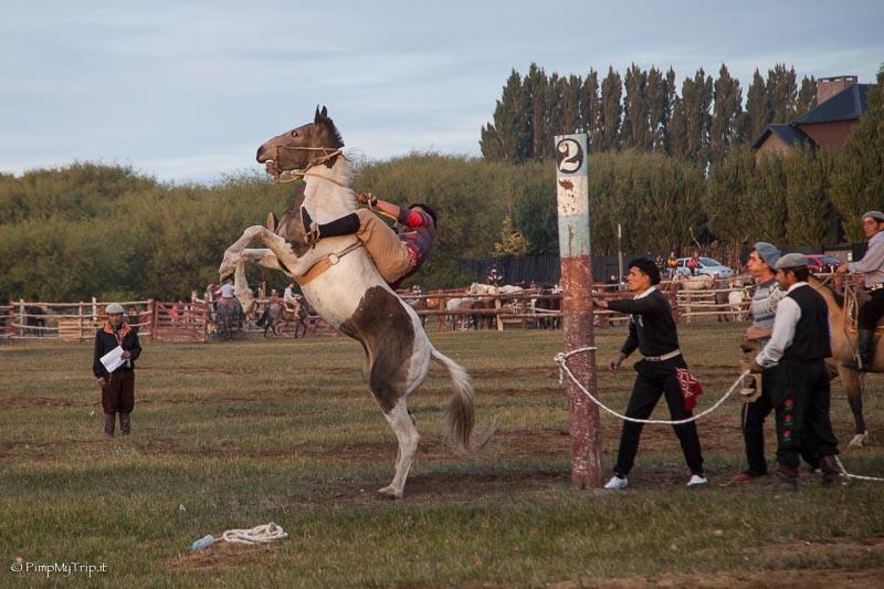 festival-argentina