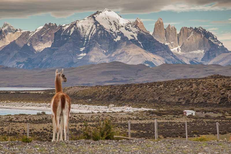 cosa vedere patagonia
