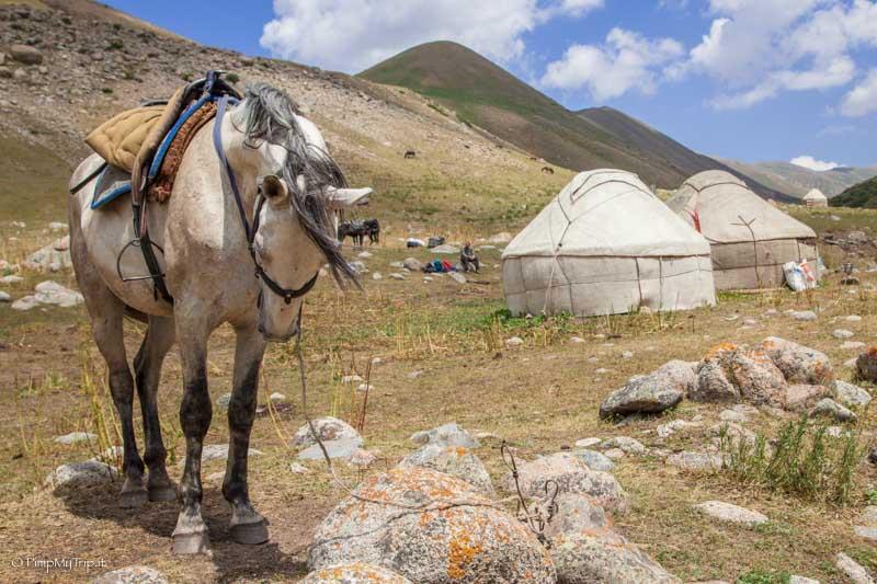 yurte nomadi kirghizistan