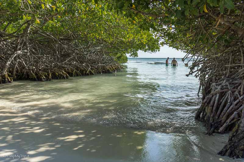 Mangel-halto-beach