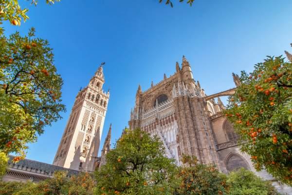 cattedrale-esterno-tetto
