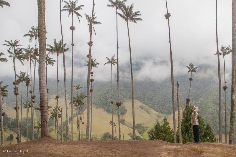 trekking-valle-cocora