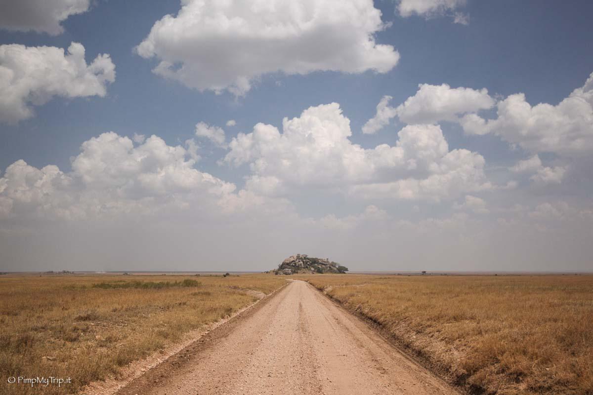 safari-tanzania-periodo-migliore