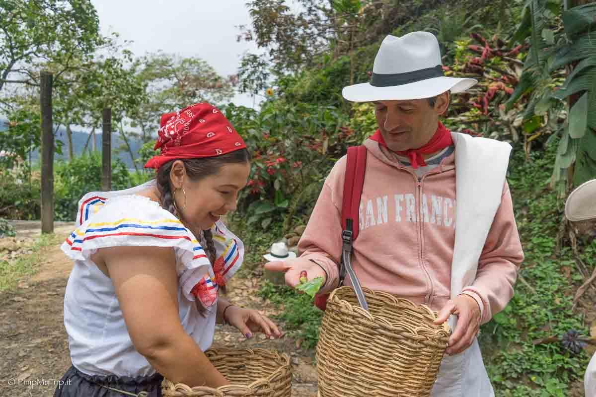 storia-caffe-colombia