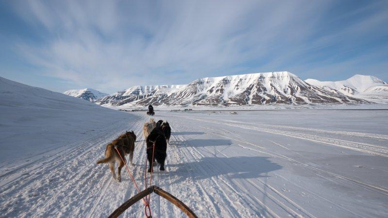 dog-sledding-svalbard