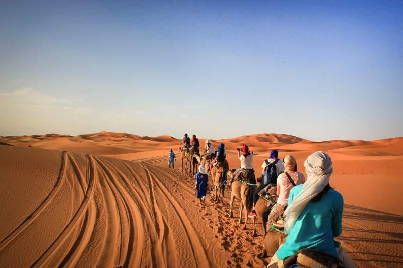 merzouga-trekking-cammelli