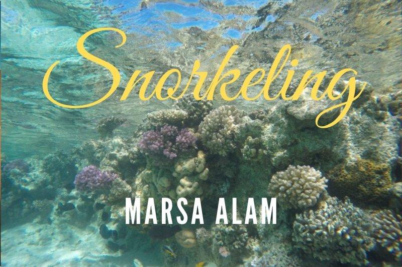 snorkeling-marsa-alam
