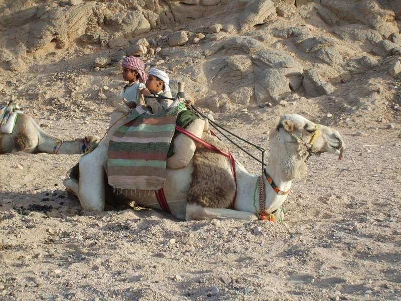 escursioni-deserto-hurghada