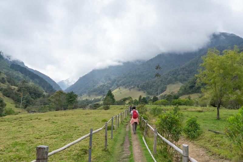 valle-cocora-trekking-lungo