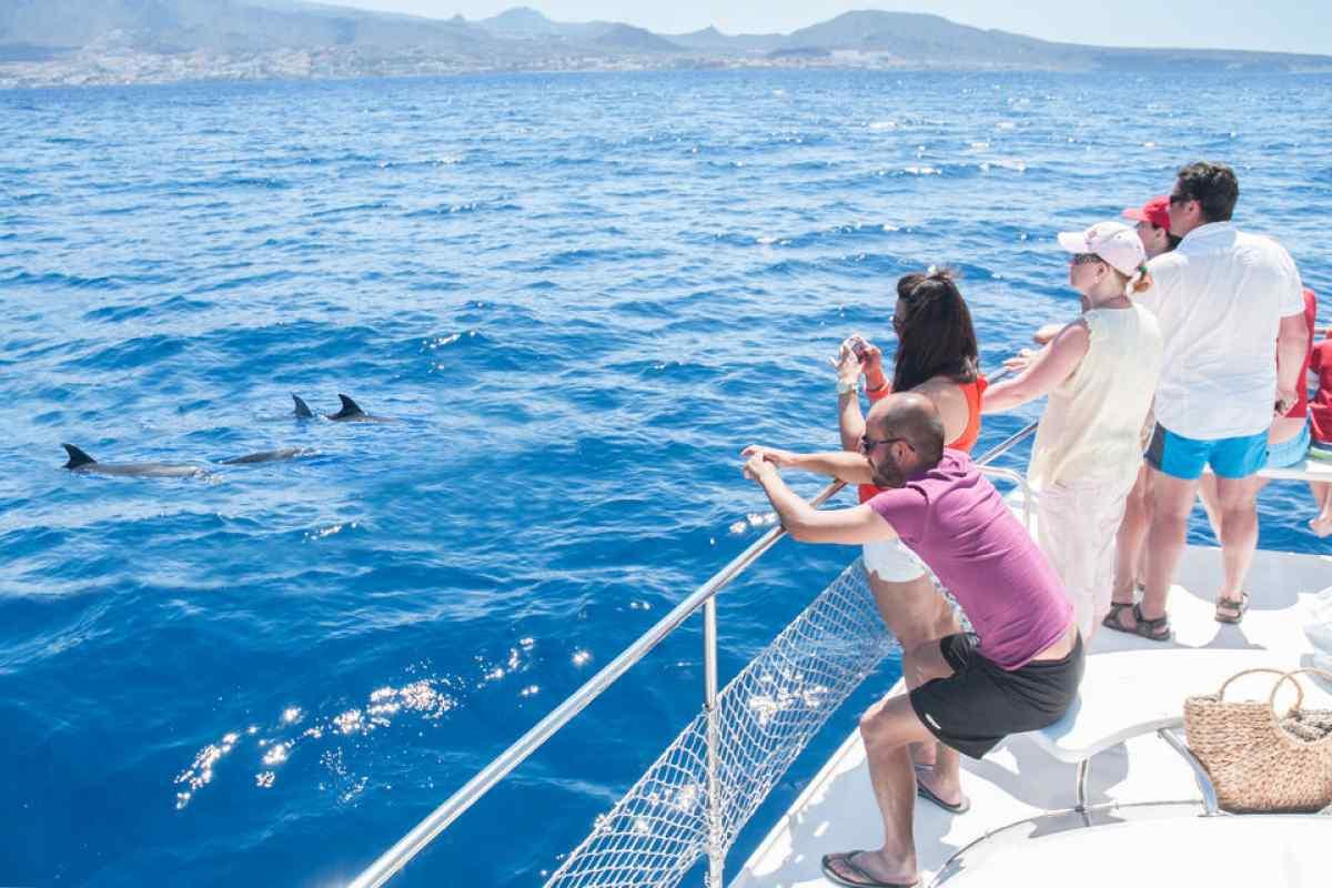 escursione osservazione balene economica